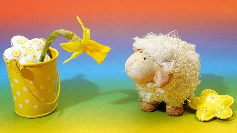 Perchè uccidiamo e mangiamo gli agnelli per Pasqua?